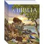 Bíblia Ilustrada Da Família Infantil Capa Dura Brinde