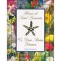 Livro Os 12 Raios Divinos E Os Florais De Saint Germain