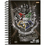 Agenda 2019 Harry Potter Esp 64687 4p Jandaia