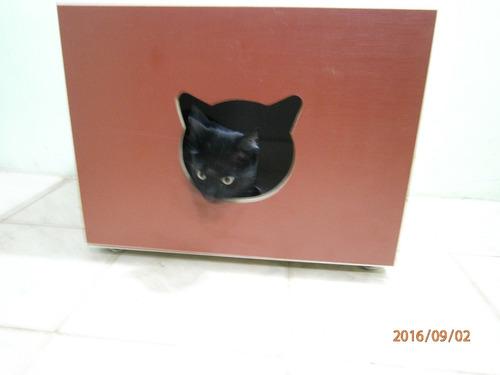 Banheiro (caixa Higiênica) Para Gatos