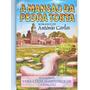 Livro: A Mansão Da Pedra Torta Vera Lúcia Marinzeck 1995