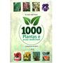 Fitoterapia 1000 Plantas E Ervas Medicinais (03 Unidades)